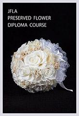 diploma02.jpg